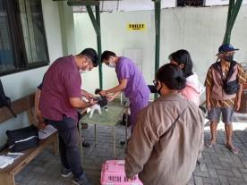 Vaksinasi Rabies oleh Dinas Pertanian dan Ketahanan Pangan Kota Yogyakarta Di Kelurahan Warungboto Kecamatan Umbulharjo Kota Yogyakarta